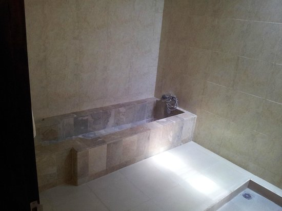 Beji Ubud Resort: Meest aparte bad waar ik ooit in gelegen heb