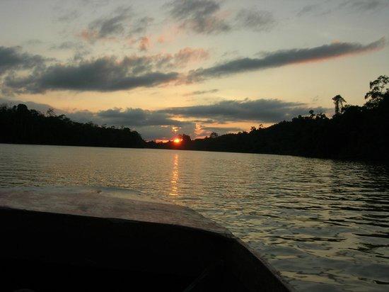Sukau RB Lodge : river trip