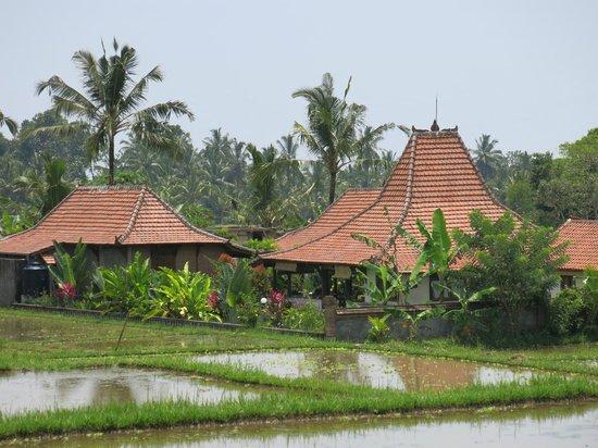 Rumah Sungai Villa: Depuis la route du village