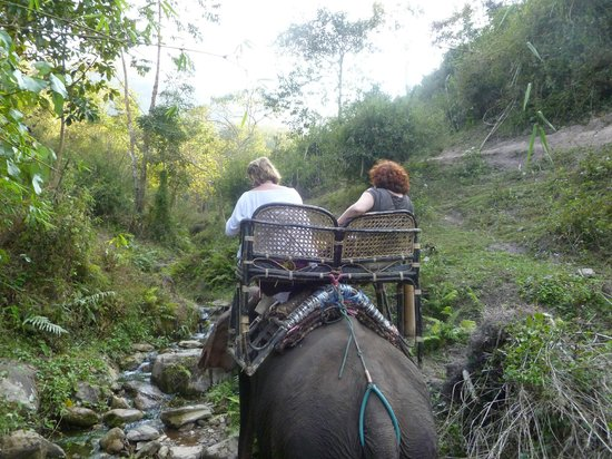 Sanctuary Pakbeng Lodge : Ballade en éléphants