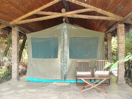 Fig Tree Camp: Vores luksus telt