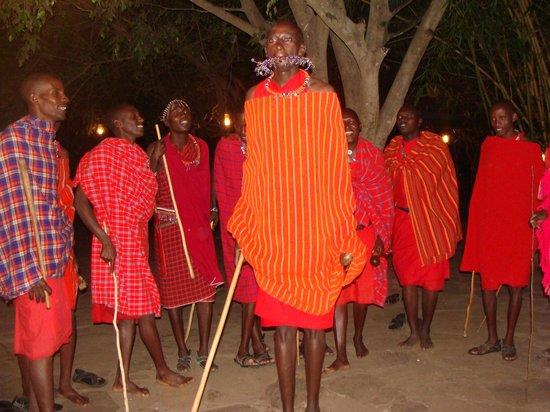 Fig Tree Camp : Optræden af hoppende Masai'er set fra spisesalen