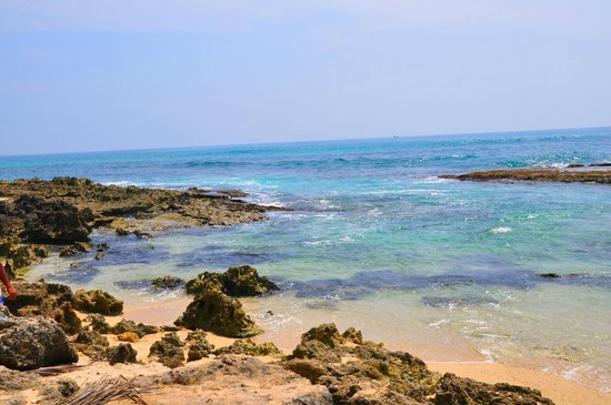 Club Koggala Village : Океан