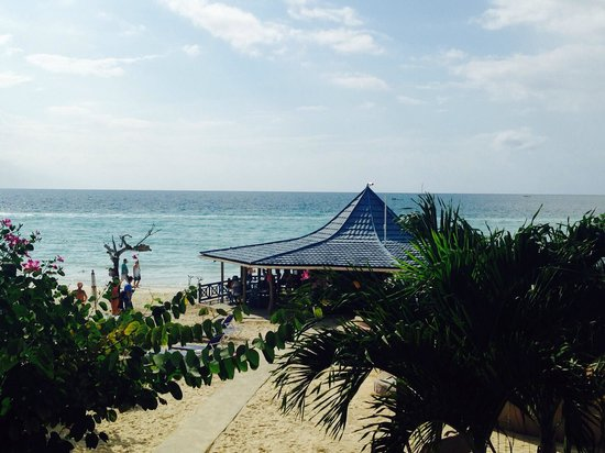 Negril Tree House Resort : Wiew from balcony