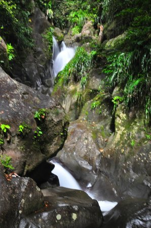 Guadeloupe National Park : Near the town of St. Claude