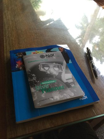 Action Divers: Padi Dive Book