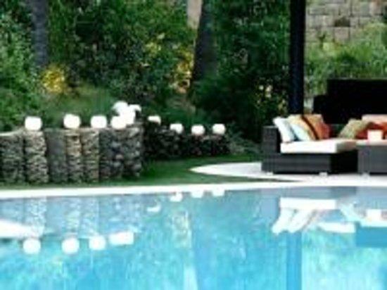 Senator Banus Spa Hotel: Pisina
