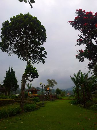 Enjung Beji Resort: backyards of enjung beji