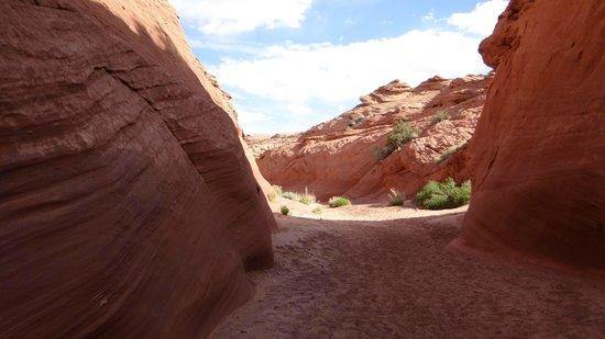 Water Holes Canyon: mai 2013