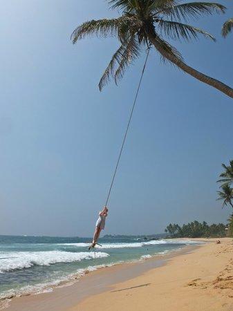 Ambalama Villa : Robe swing nearby