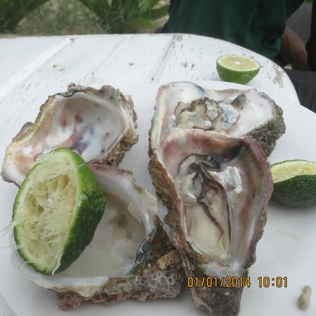 Casa na Praia Tofo: oysters!! so fresh we were so surprised..
