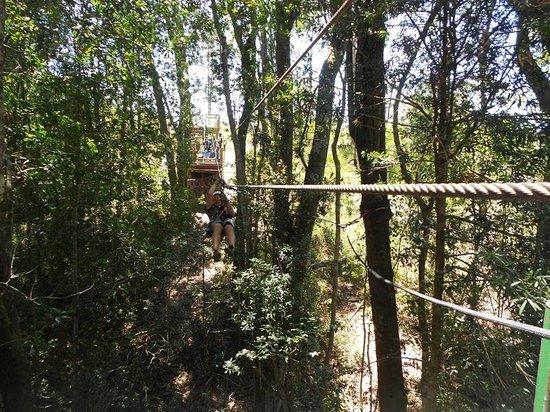 Tsitsikamma Canopy Tours: no speed limit :-P