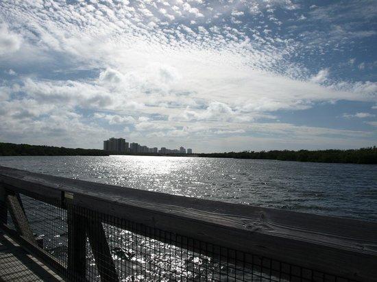 John D. MacArthur Beach State Park: View from the bridge