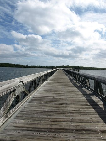 John D. MacArthur Beach State Park: Bridge to beaches