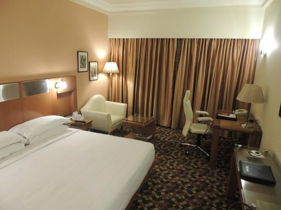 The Suryaa New Delhi : Room
