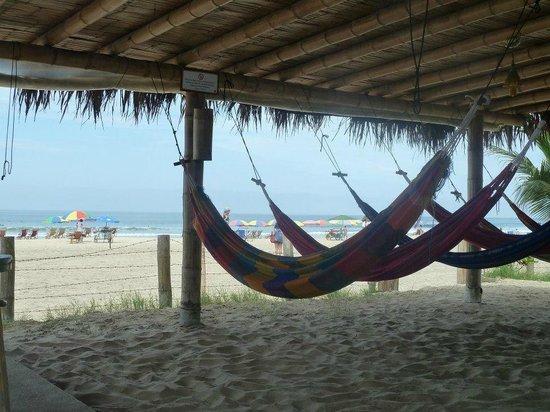 Hostal Kundalini: Hamacas con vista a la playa