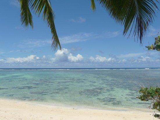 Makayla Palms: le lagon