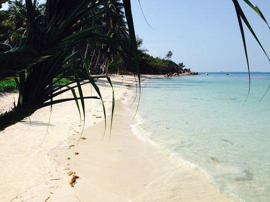 Beyond The Blue Horizon Villa Resort : Strand 15 min zu Fuß (über eine sehr hügelige Straße) vom Resort entfernt