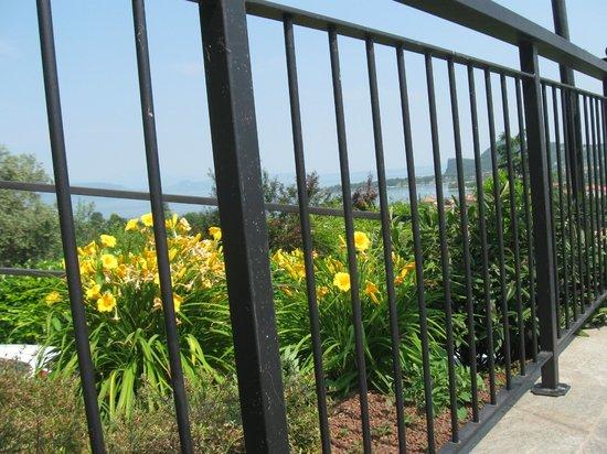 Hotel Belvedere : il giardino  dell' Hotel  bello e curato