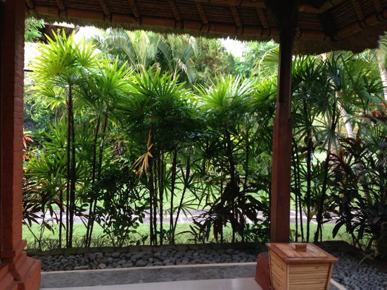 Taman Sari Bali Resort & Spa : Garden surrounding room