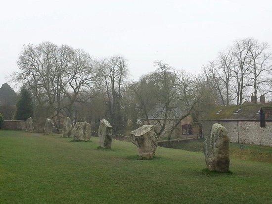 Avebury Stone Circle : Avebury stones