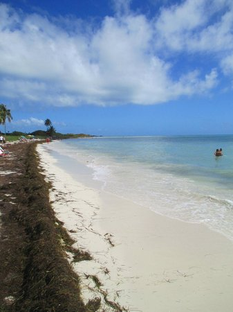 Bahia Honda State Park and Beach: Another Beach at the park