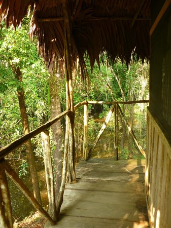 Amazonia Expeditions' Tahuayo Lodge: Lodge Principal Habitacion 16: Vista