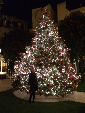 Le Bristol Paris : A gorgeous Christmas tree in the outdoor courtyard