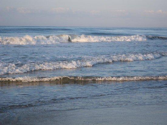 Playa Viva: ocean view
