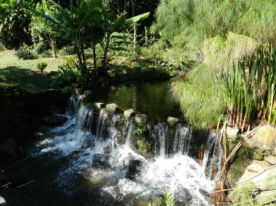 Pousada Sitio & Poesia : Cachoeira