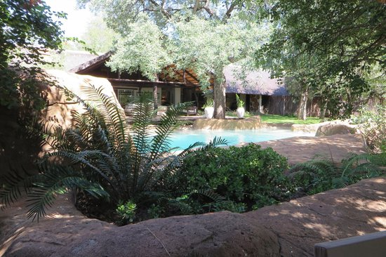 Chapungu Tented Bush Camp: Swimming pool and main camp