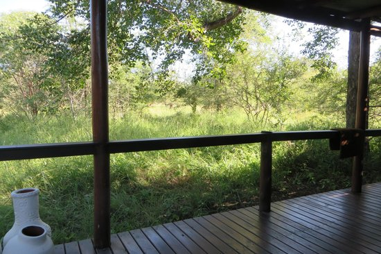 Chapungu Tented Bush Camp: Room view