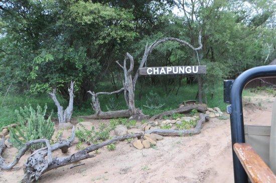 Chapungu Tented Bush Camp: Camp