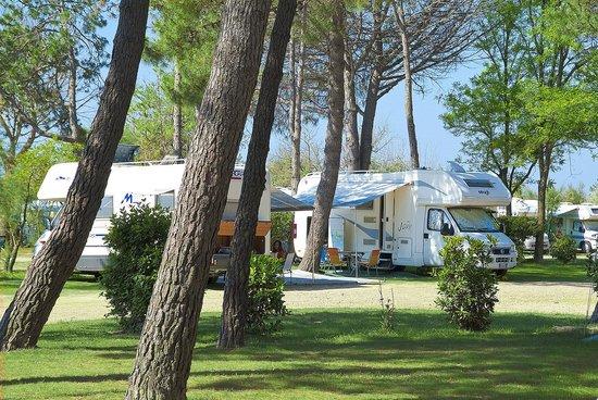 Bibione Pineda, Italy: Camping Lido Piazzole
