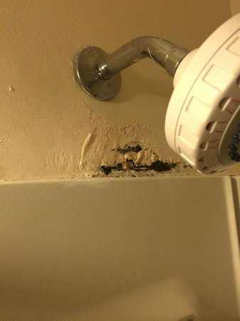 Days Inn High Point / Archdale: Mold and Corrosion in Shower