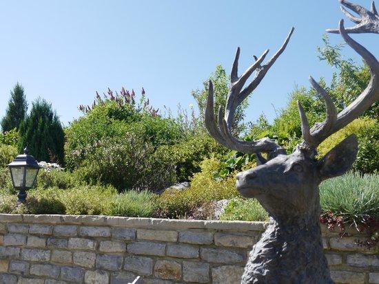 Primrose House : Rear garden view