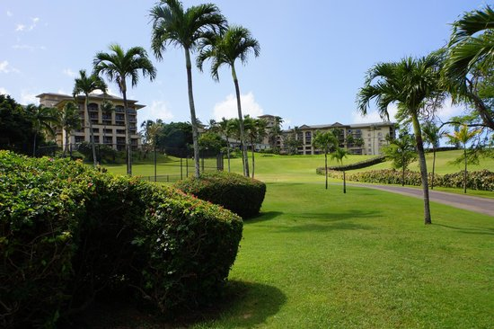 The Ritz-Carlton, Kapalua: Looking back to the hotel from the path leading to the beach