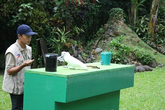 Malagos Garden Resort: Segregation
