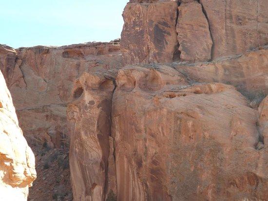AZ Canyon Jeep Tours