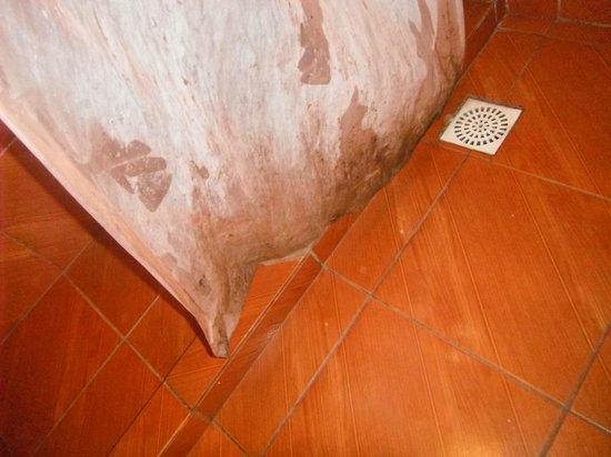Rio Nature Adventure Hostel: Lodo na cortina do banheiro
