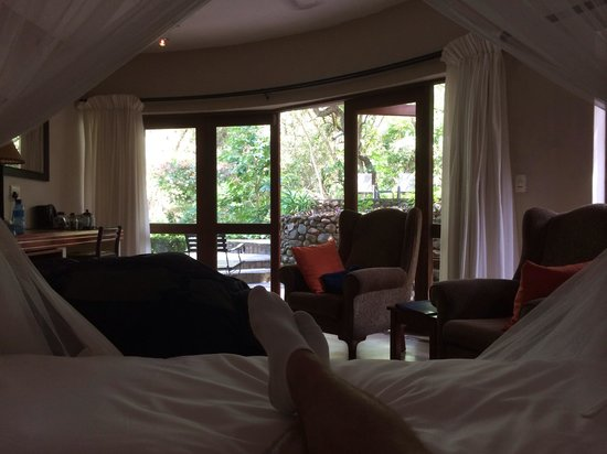 Blue Jay Lodge: View from the bed in the room