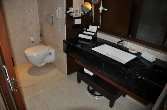 Golden Tulip Gurgaon: Bathroom, facing toilet