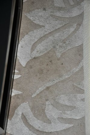 Golden Tulip Gurgaon: Stained/dirty rug