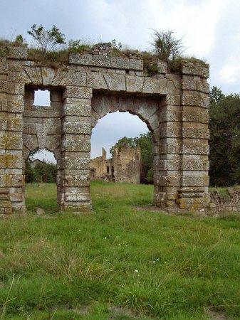 Remains Chateaux du bois Froi