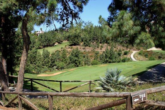 El Chaparral Golf Club: HOYO 18