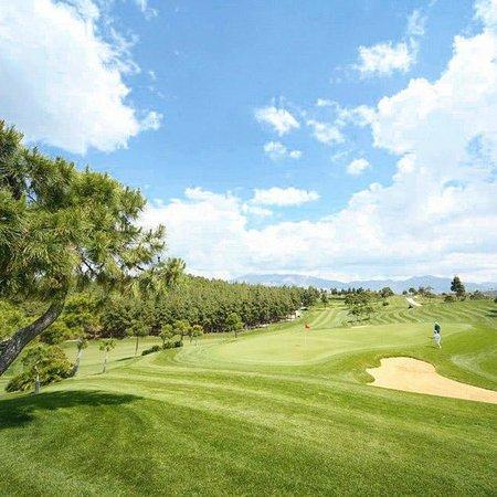 El Chaparral Golf Club: Hole Nº14