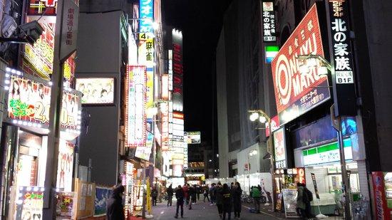 Kabukicho: Neon Signs