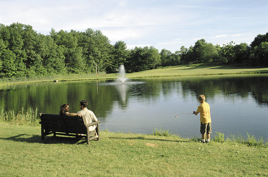 Lake George RV Park: Bass Fishing Pond