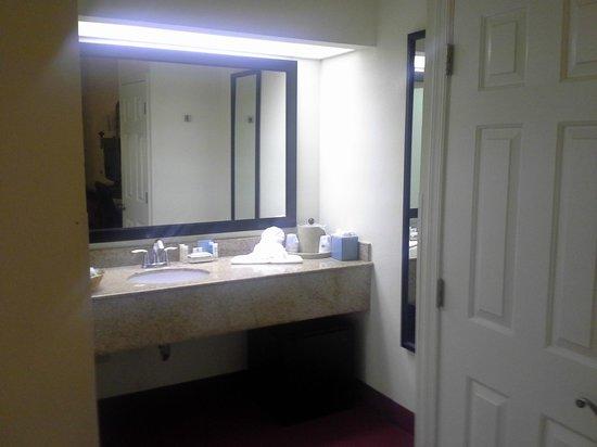 Hampton Inn Walterboro: Room vanity