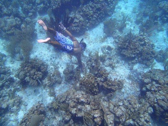 Culebra Bluewater Charters